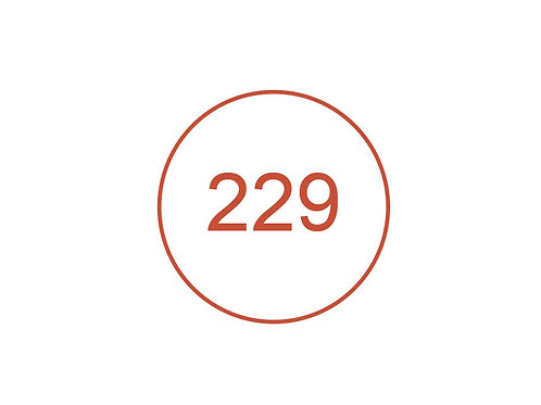 Número 229