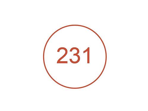 Número 231