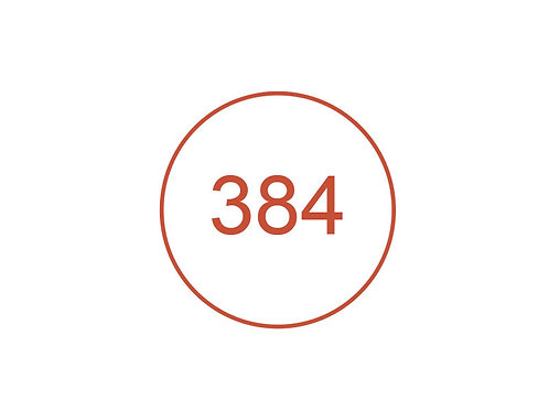 Número 384
