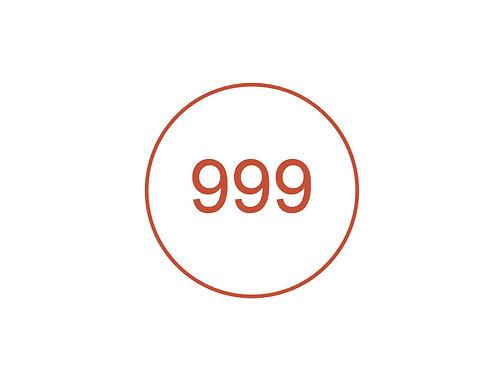 Número 999