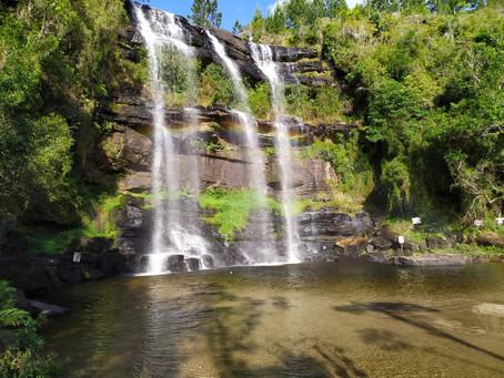 Visitar Ponta Grossa é imergir em cultura, em tradições e descobrir novas vocações