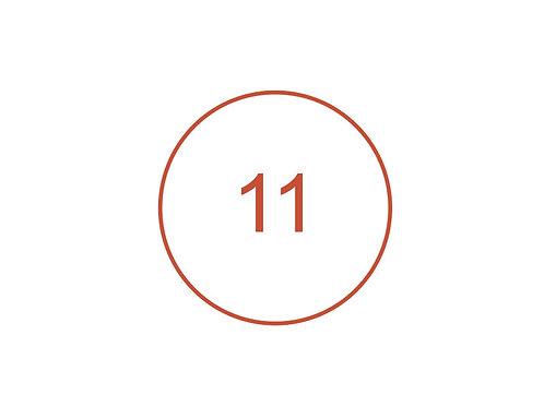 Número 11