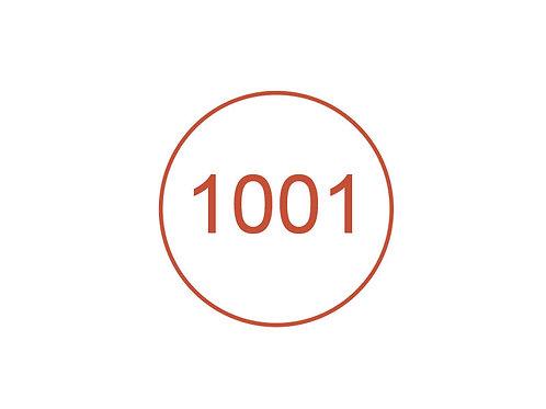 Número 1001
