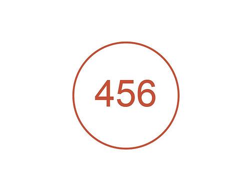 Número 456