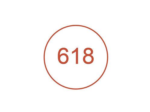 Número 618