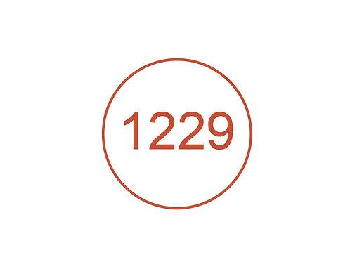 Número 1229