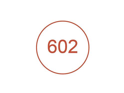 Número 602