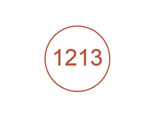 Número 1213
