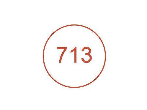 Número 713