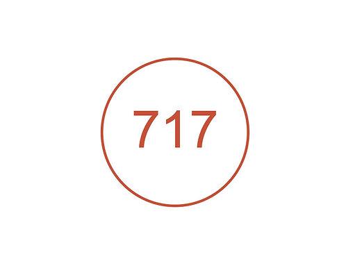 Número 717