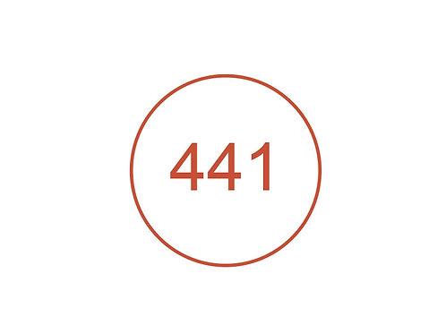 Número 441
