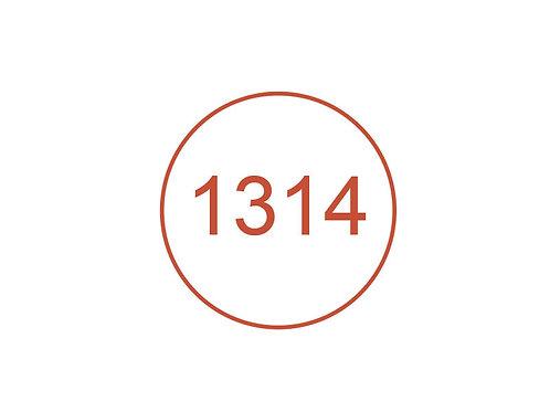 Número 1314