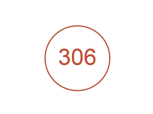 Número 306