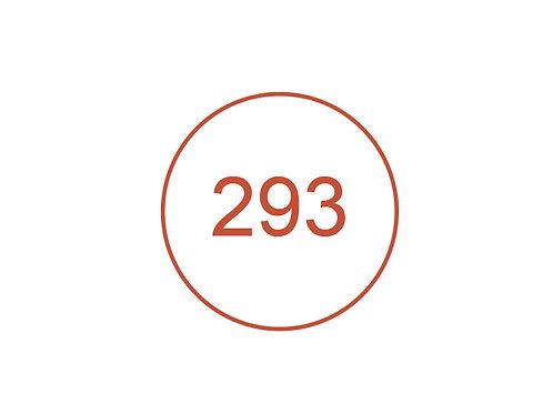 Número 293