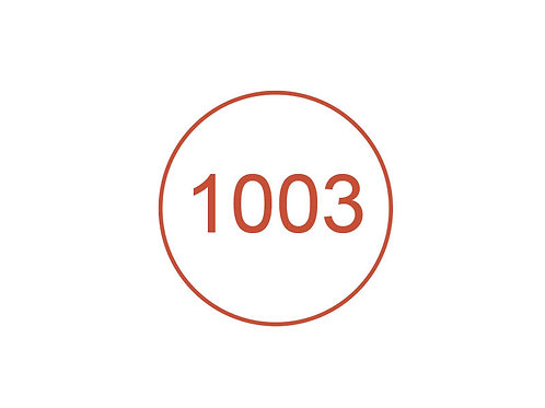Número 1003
