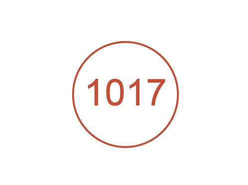 Número 1017
