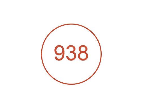 Número 938