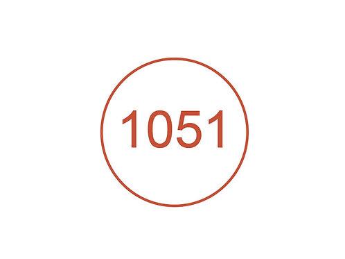 Número 1051