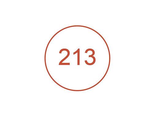 Número 213