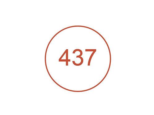 Número 437