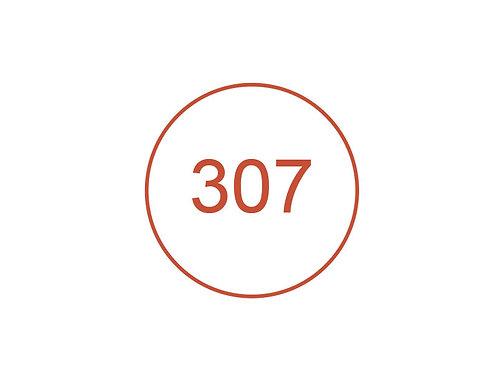 Número 307