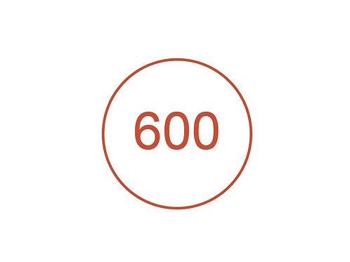 Número 600