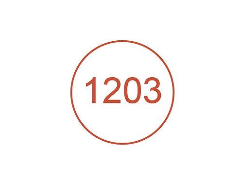 Número 1203