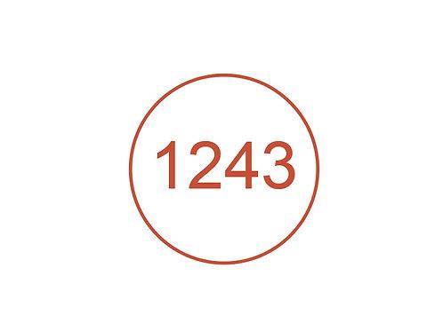Número 1243