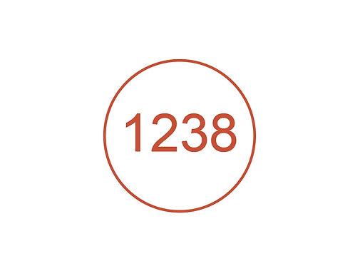 Número 1238