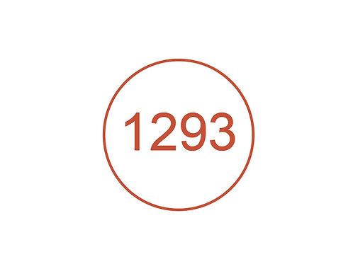 Número 1293