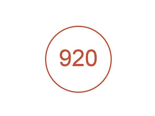 Número 920