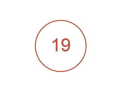 Número 19