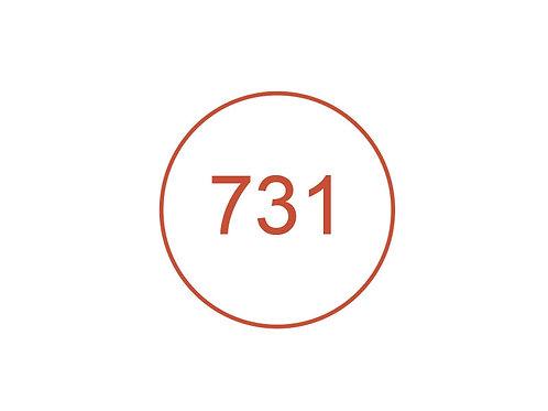 Número 731