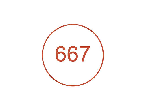 Número 667