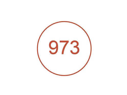 Número 973