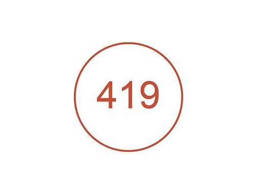Número 419