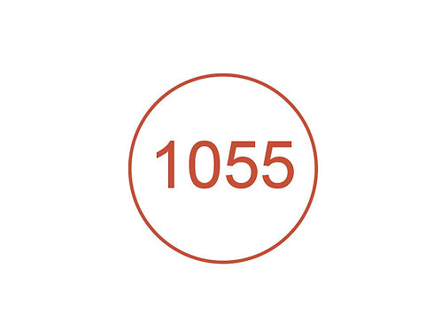 Número 1055