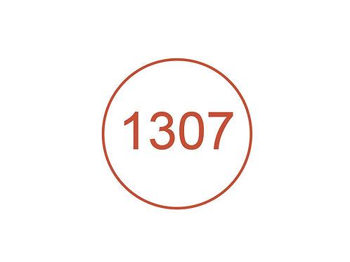 Número 1307