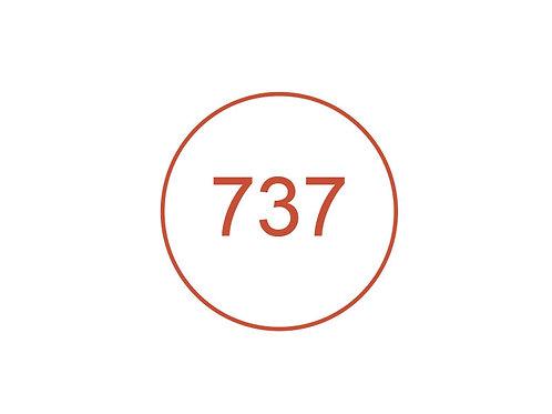 Número 737
