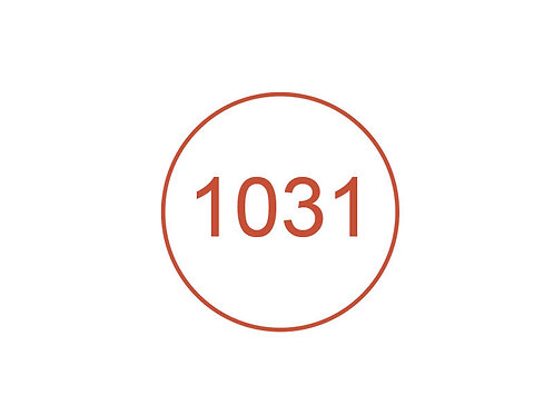 Número 1031