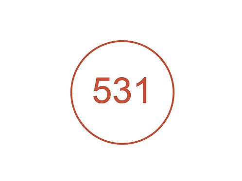 Número 531