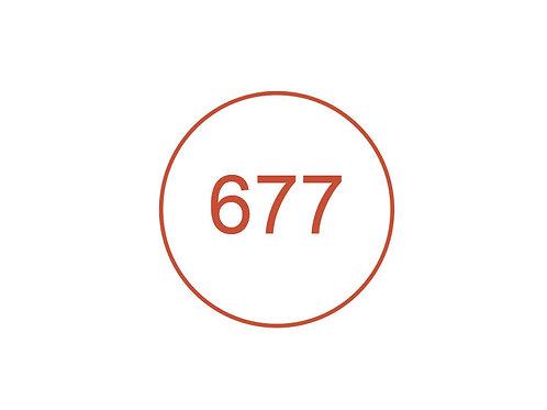 Número 677