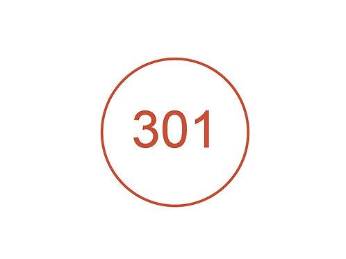 Número 301