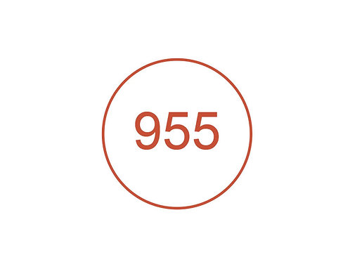 Número 955