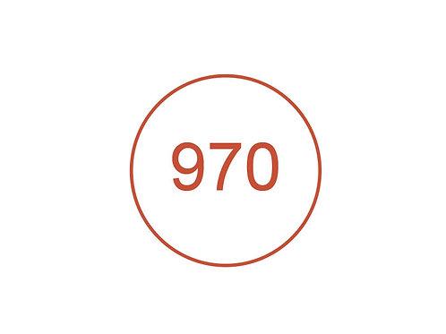 Número 970