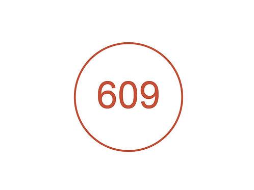 Número 609