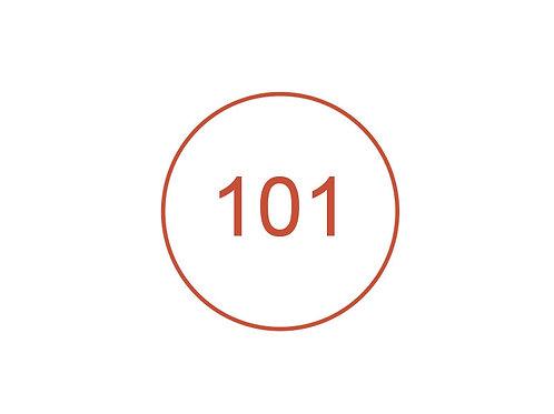 Número 101