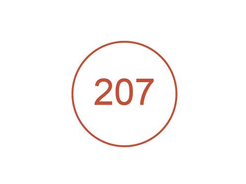 Número 207