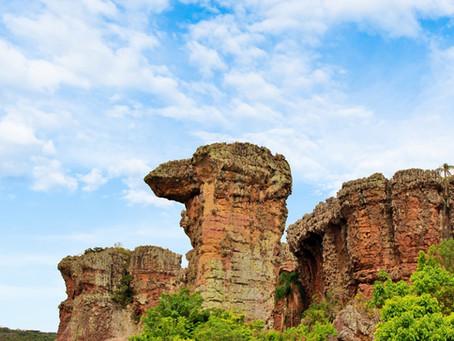 Atrativos Naturais, como parques, voltam a atender em Ponta Grossa