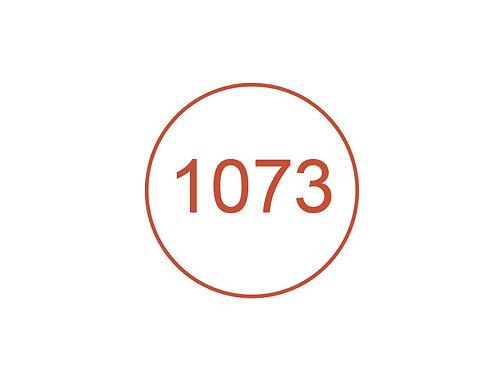 Número 1073